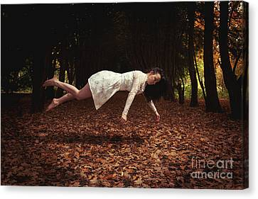 Levitate Canvas Print