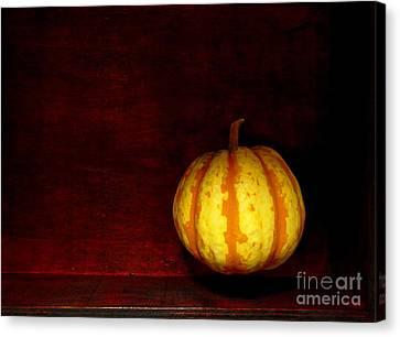 Levitate Pumpkin - Still Life Canvas Print by Birgit Moldenhauer