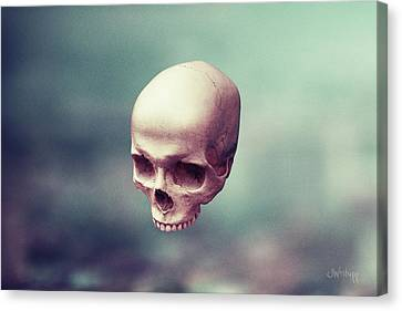 Levity Canvas Print by Joseph Westrupp
