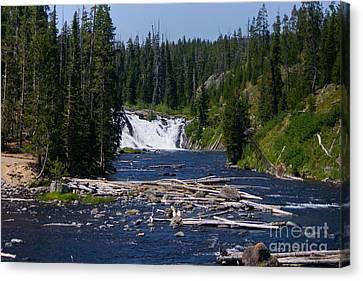 Lewis Falls Yellowstone Canvas Print