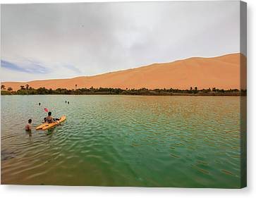 Libyan Oasis Canvas Print