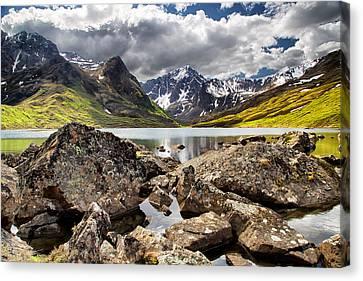 Lichen View Canvas Print by Ed Boudreau