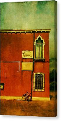 Canvas Print featuring the photograph Lido Lion by Anne Kotan