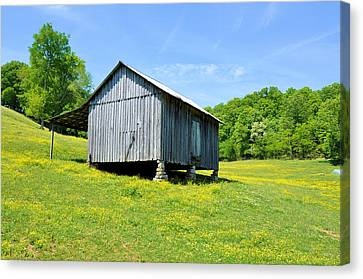 Lieper's Fork Cabin Canvas Print by Jan Amiss Photography