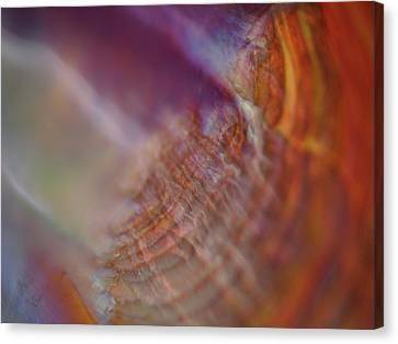 Shell Art Canvas Print - Life At Sea by Rona Black