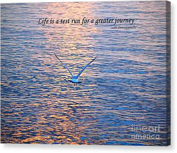 Canvas Print featuring the photograph Life Is A Test Run For A Greater Journey by Susan  Dimitrakopoulos