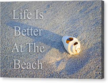 Seashells Canvas Print - Life Is Better At The Beach - Sharon Cummings by Sharon Cummings