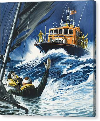 Life Savers Canvas Print by Wilf Hardy