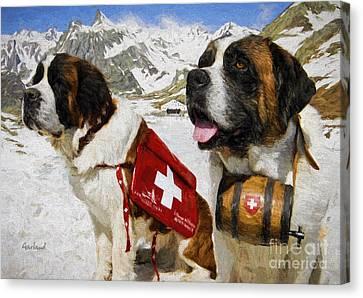 Life Saving Saint Benards Canvas Print