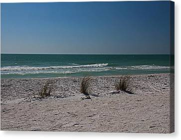 Life's A Beach Canvas Print by Michiale Schneider
