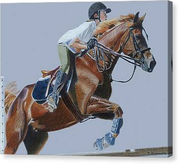 Horse Jumper Canvas Print by Patricia Barmatz