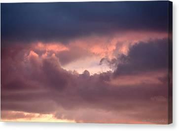 Light After Storm Canvas Print