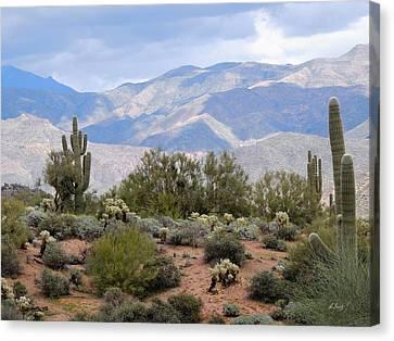 Carefree Arizona Canvas Print - Light And Shadow by Gordon Beck