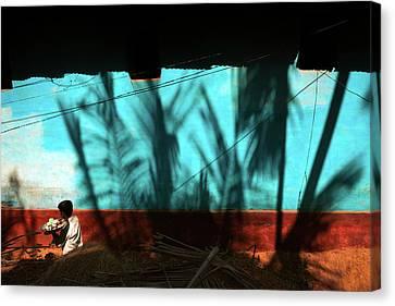Light And Shadows Canvas Print by Marji Lang