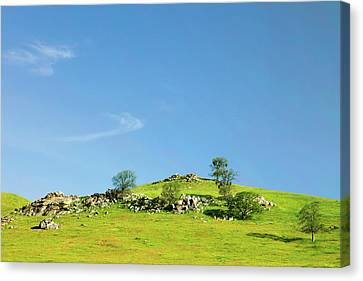 Canvas Print featuring the photograph Light And Shadows - Spring In Central California by Ram Vasudev