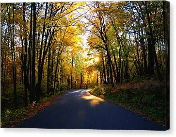 Light At The End Of The Road Canvas Print by Joe Medina