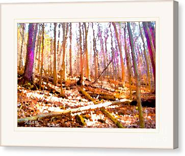 Canvas Print featuring the photograph Light Between The Trees by Felipe Adan Lerma