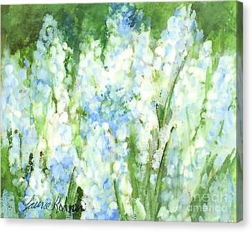 Light Blue Grape Hyacinth. Canvas Print by Laurie Rohner