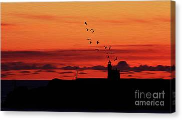 Light House 01 Canvas Print by Gull G