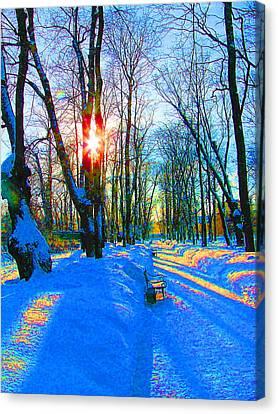 Light In Garden Canvas Print by Yury Bashkin