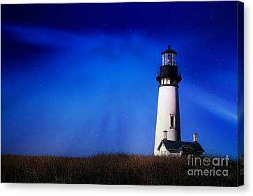 Light My Way Canvas Print by Sheila Ping