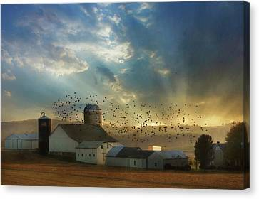 Light Of A New Day Canvas Print by Lori Deiter