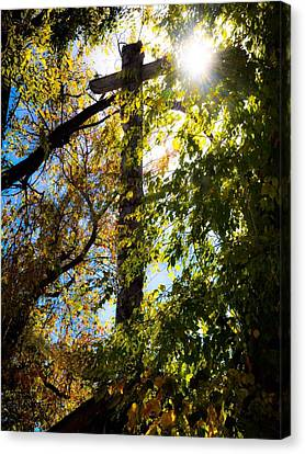 Light Of Day  Canvas Print by Brittany H