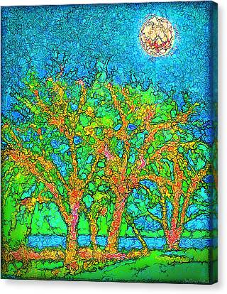 Canvas Print featuring the digital art Light Of The Radiant Sun - Trees In Boulder County Colorado by Joel Bruce Wallach