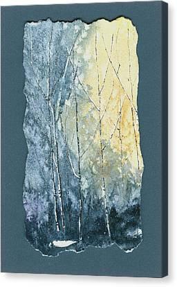 Light On Bare Trees 1 Canvas Print