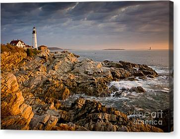 Light On Portland Head Canvas Print by Susan Cole Kelly
