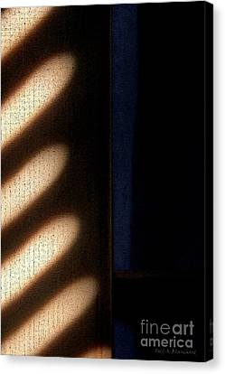 Light Rays Canvas Print