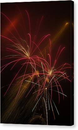 Light Up The Night Canvas Print by Garry Gay