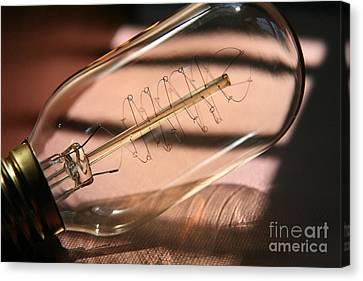 Lightbulb Moment  Canvas Print by Lynn England