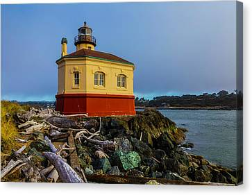 Lighthouse And Driftwood Canvas Print by Garry Gay