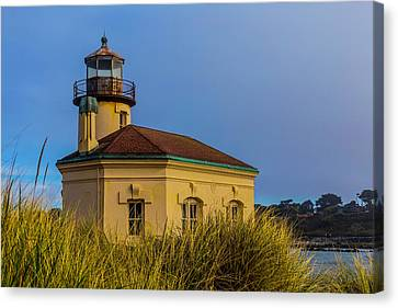 Lighthouse And Dune Grass Canvas Print by Garry Gay