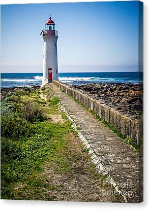 Lighthouse Beach Canvas Print by Perry Webster