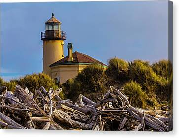 Lighthouse With Driftwood Canvas Print by Garry Gay