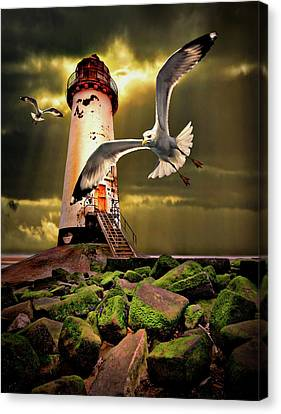 Flying Seagull Canvas Print - Lighthouse With Seagulls by Meirion Matthias
