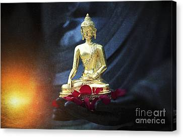 Lighting The Lamp Within Canvas Print by Tim Gainey