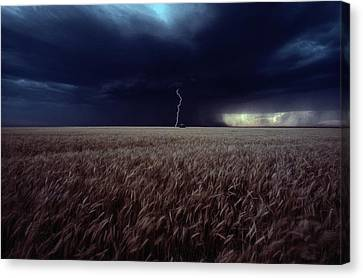 Lightning Flashes Above A Kansas Wheat Canvas Print by Cotton Coulson