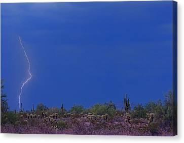Lightning Strike In The Desert Canvas Print by James BO  Insogna
