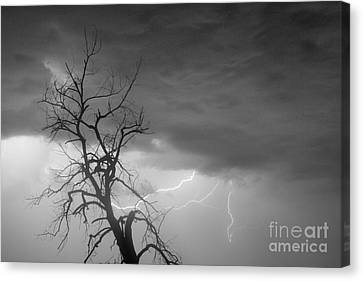 The Lightning Man Canvas Print - Lightning Tree Silhouette 29 In Black And White by James BO  Insogna