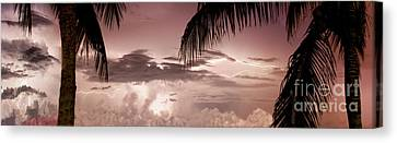 Lightning Under The Palms Canvas Print by Jon Neidert