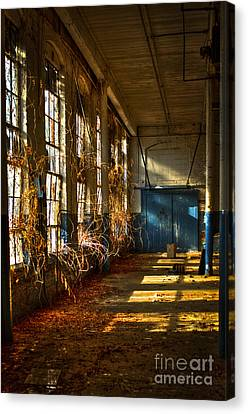 Glass Wall Canvas Print - Lightroom Too Mary Leila Cotton Mill 1899 by Reid Callaway