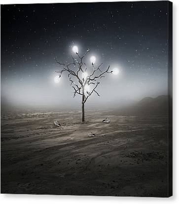 Lights Out Canvas Print by Zoltan Toth
