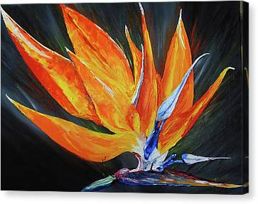 Like Bird Canvas Print