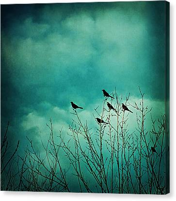 Canvas Print featuring the photograph Like Birds On Trees by Trish Mistric