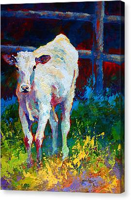 Like My Daddy Canvas Print by Marion Rose