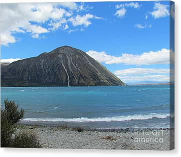 Likes In New Zealand   Canvas Print by Joyce Woodhouse