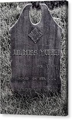 Lil Miss Muffet Canvas Print